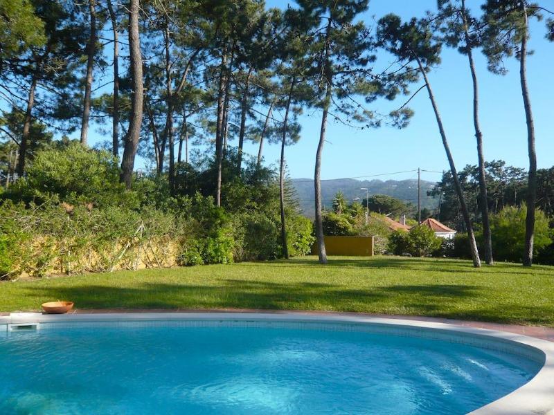 Apple Beach Villa - Image 1 - Sintra - rentals