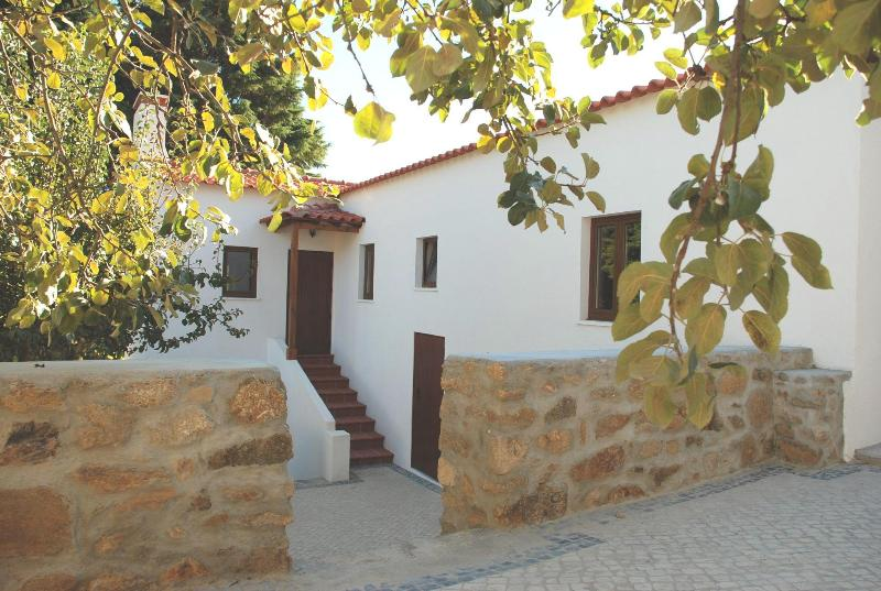 Cosy Holiday Cottage - with all modern amenities - Image 1 - Figueiro dos Vinhos - rentals