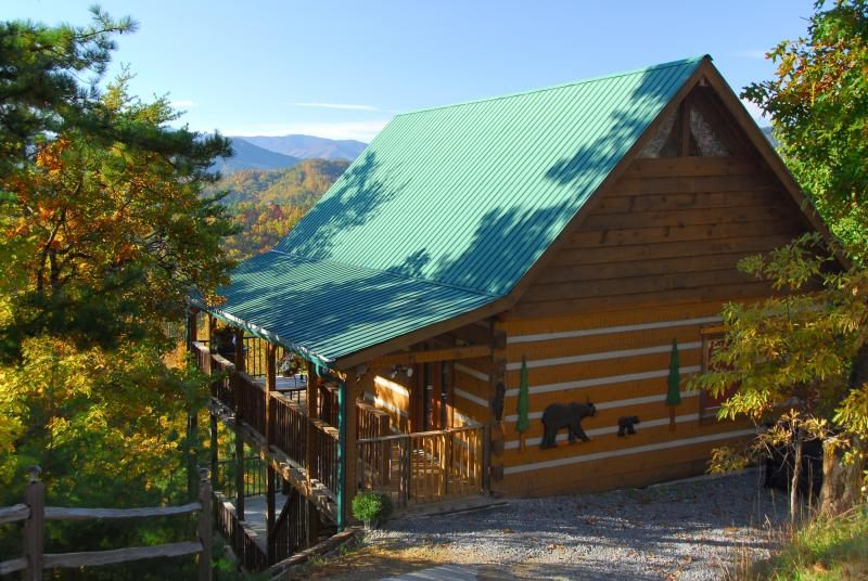 Everything about this cabin delights - nestled in trees, completely private w/ unique wood carvings - OPEN This Wkend! March 4-8, $110/nt! Stunning Views, Private, Kg Bds, amenities! - Wears Valley - rentals