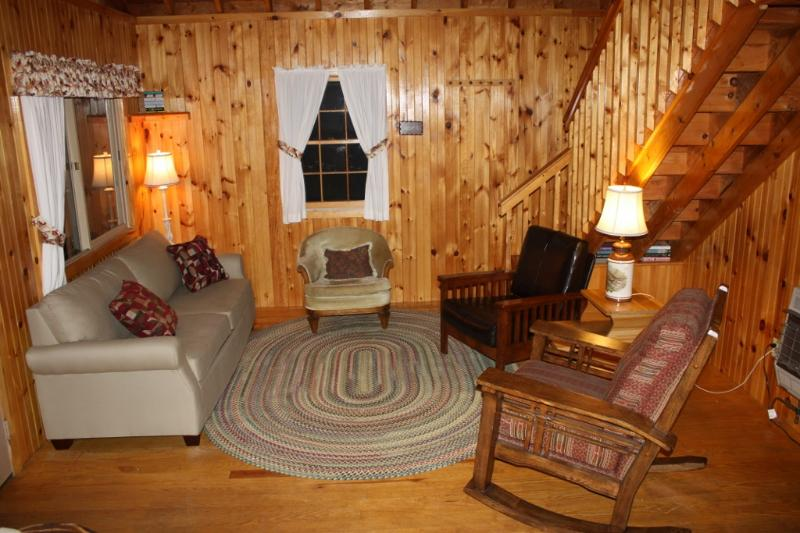 Living room - Family-Friendly Updated  Cottage Androscoggin Lake - Leeds - rentals
