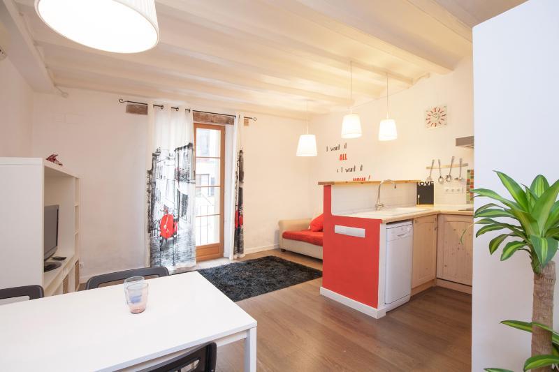 Centrico & Confortable Piso - WIFI - Image 1 - Barcelona - rentals