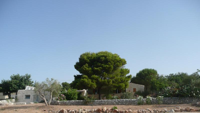 View from the garden - Countryside Villa with sea view - Ragusa - rentals