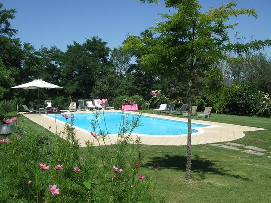 Swimming pool in the park - RED HOUSE in CASTEL CELLESI  (BAGNOREGIO - VITERBO - Viterbo - rentals