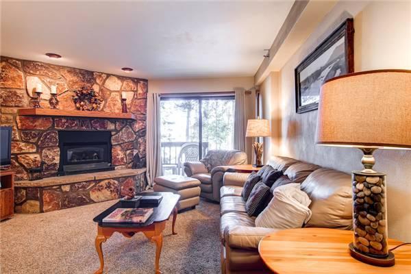 Atrium Condo #002 - Image 1 - Breckenridge - rentals