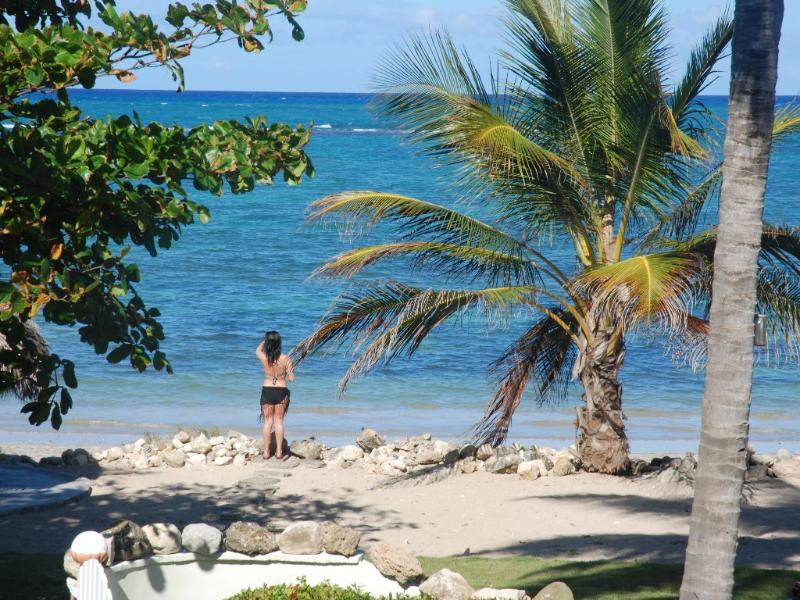 The Caribbean at its best! - The Best kept Secret...Ocean front private Villa - Puerto Plata - rentals