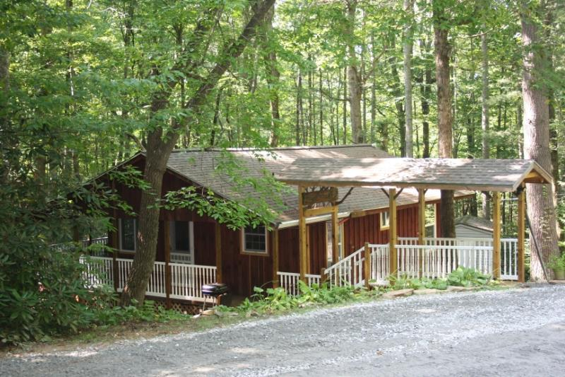 Falling Water Cottage on Stream! - WiFi - Fenced - Image 1 - Brevard - rentals