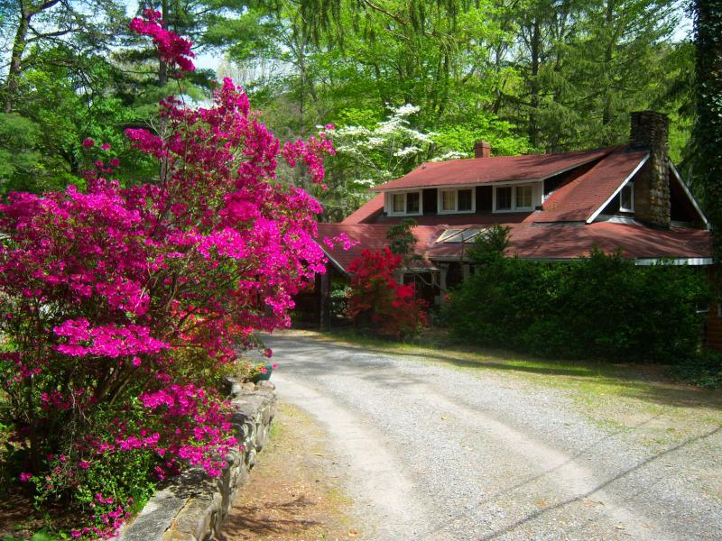 Main Lodge House - Rustic with Comfort Cabins Great for Groups - Black Mountain - rentals