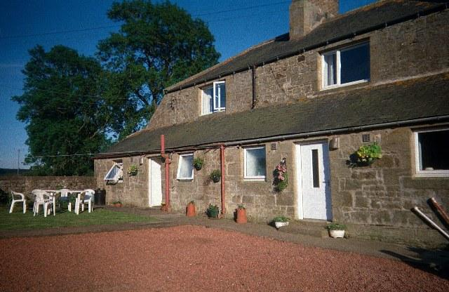 Mordue's Cottage to the  left - Mordue's Cottage Lorbottle West Steads Thropton - Morpeth - rentals