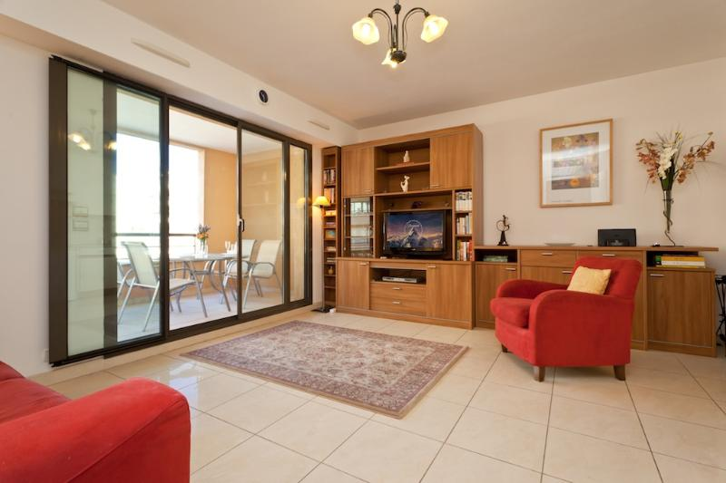 Nice Studio with a Terrace, on the Promenade des Anglais - Image 1 - Nice - rentals