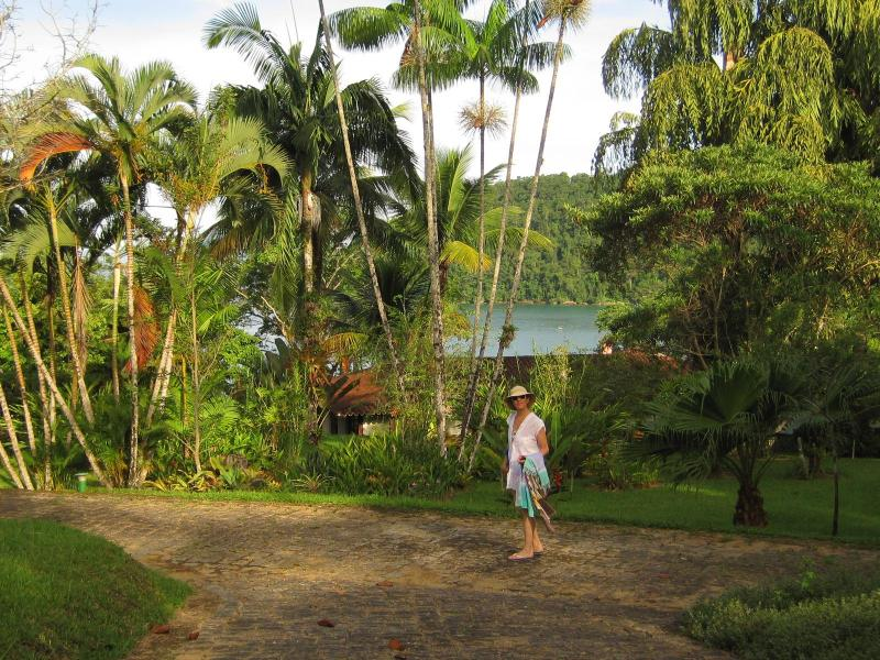 Garden and house - Unique house with breathtaking view on the sea! - Paraty - rentals