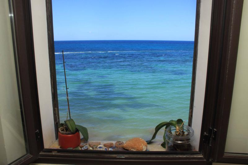 sea view from the house - Trapani SEAfront flat in the old city - Trapani - rentals