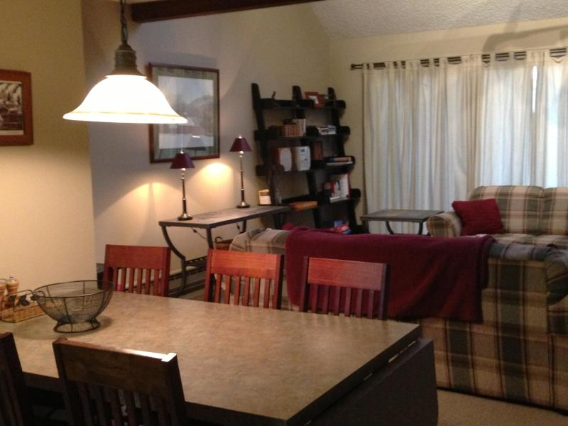 Main Level - Camelback Mountain Slopeside Townhouse - Tannersville - rentals