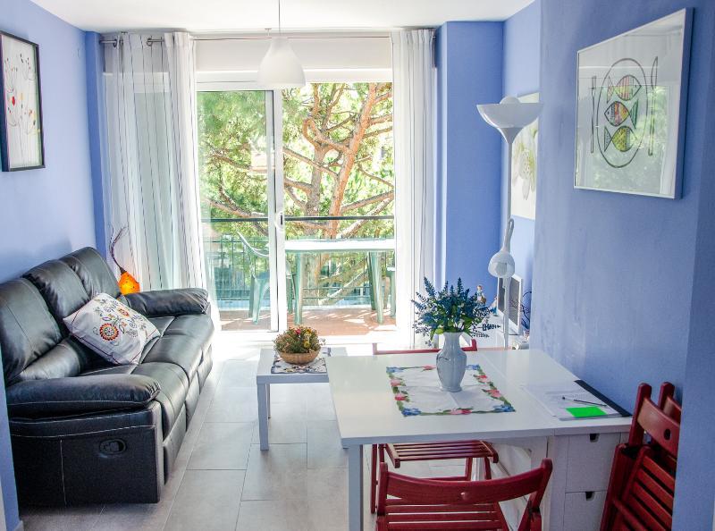 Apartamento a 150m de la playa y 25 kms de Barcelona - Image 1 - Cabrera de Mar - rentals