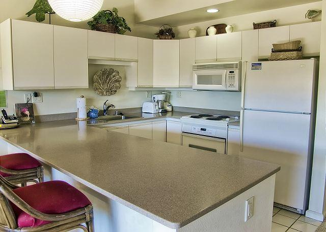 FALL SPECIALS! Open and Spacious Floor Plan with a Beautiful Garden View - Image 1 - Kihei - rentals