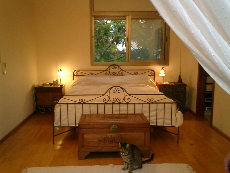 Master bedroom - Beautiful villa with swimming pool - Herzlia - rentals