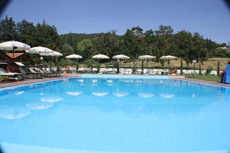 House Holiday In Tuscany - Image 1 - Arezzo - rentals