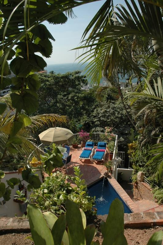 POOL, TERRACE AND THE OCEAN BEYOND - Breath Taking Views-Complete Privacy & Relaxtion - Puerto Vallarta - rentals