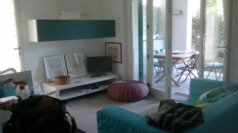 house in Tuscany - Forte dei Marmi - Image 1 - Forte Dei Marmi - rentals