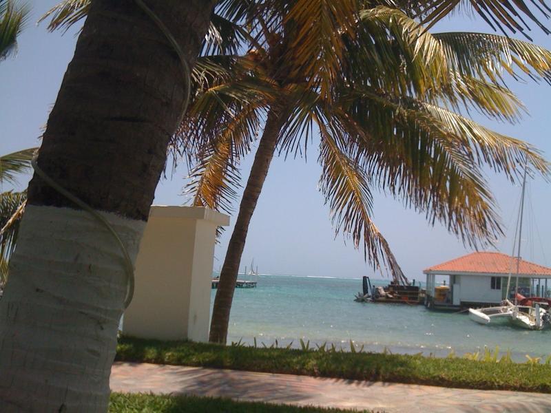 View on walk to town - Tropical Paradise retreat - San Pedro - rentals