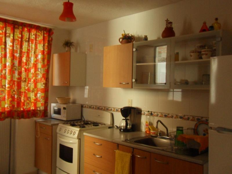 Departamento Con Todos Los Servicios - Image 1 - Lagos de Moreno - rentals