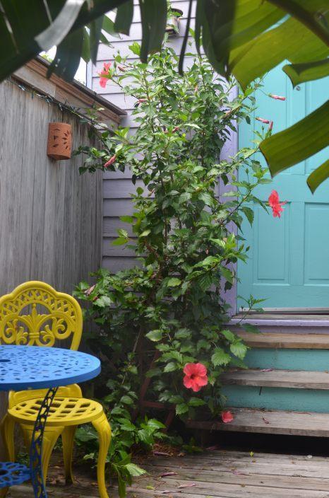 Private Garden Charm @ Esplanade Ridge & Jazz Fest - Image 1 - New Orleans - rentals