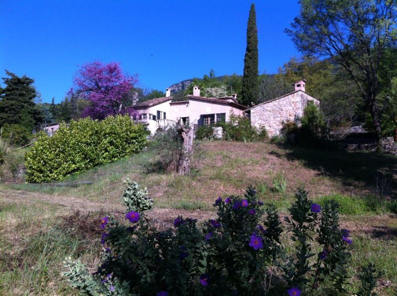Villa Olive - Beautiful authentic Provence villa - Tourrettes-sur-Loup - rentals