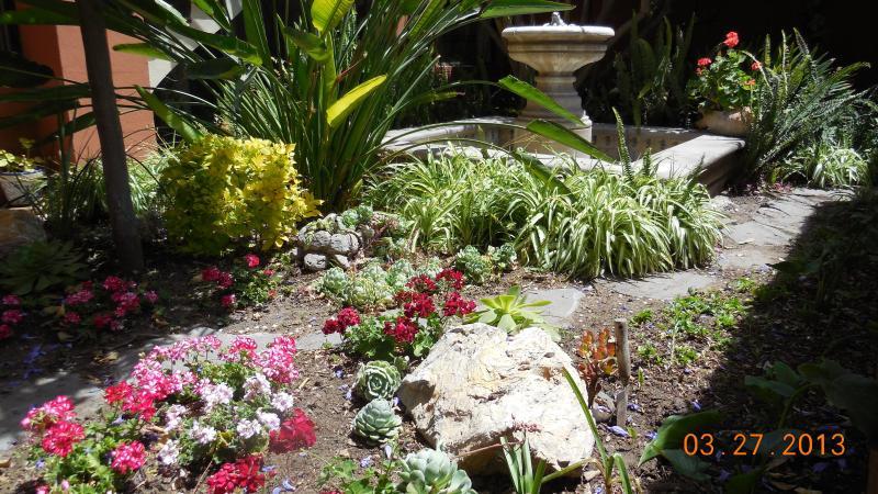Front garden - Sunny artist home in San Miguel de Allende - Arlington - rentals