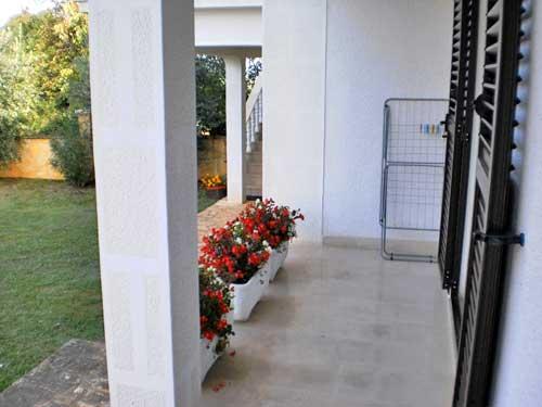 Apartments Mariano - 70271-A1 - Image 1 - Vlasici - rentals