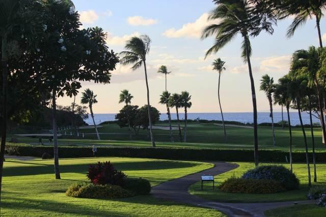Maui Eldorado #H207 Ocean View - Image 1 - Lahaina - rentals
