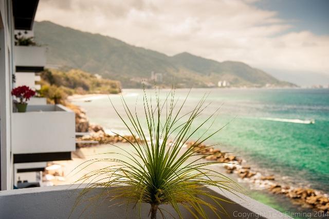Solamar Condo Ted - Image 1 - Puerto Vallarta - rentals