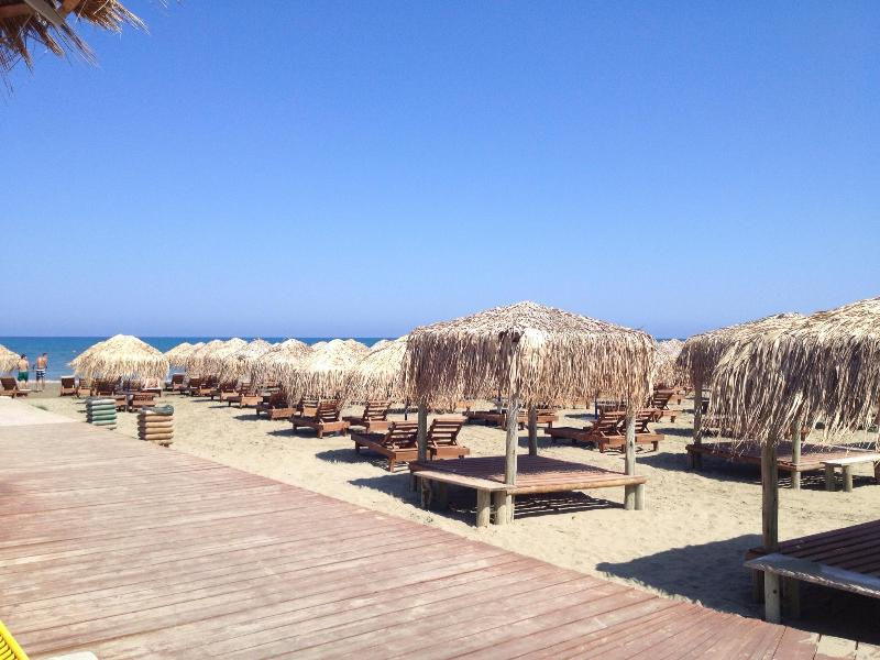 FLAT NEAR AMAZING BEACH - Image 1 - Larnaca District - rentals