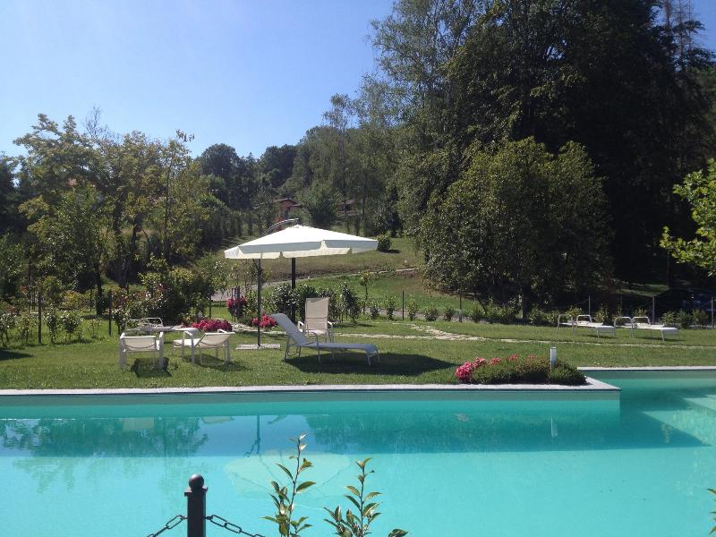 Communal swimming pool - Contemporary apartment near Stresa (BFY13541) - Meina - rentals
