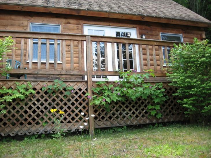 Cabin #13 'Logs & Dogs' - Image 1 - Barnet - rentals