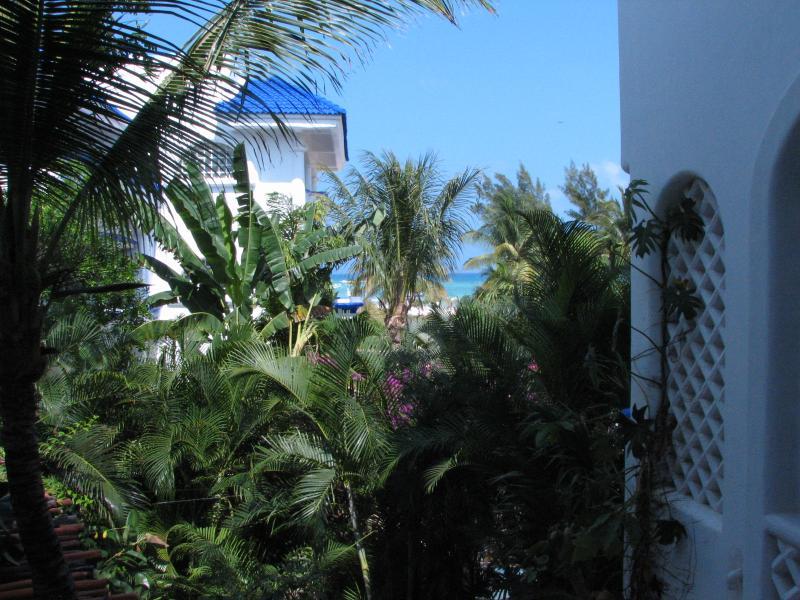 Natz Ti Ha H-201 - Condo de Aventuras - Image 1 - Quintana Roo - rentals
