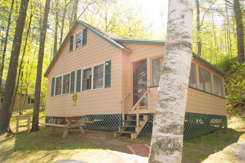 Angell Cove Cottage #5 - Family Friendly Cottage on Androscoggin Lake - Leeds - rentals