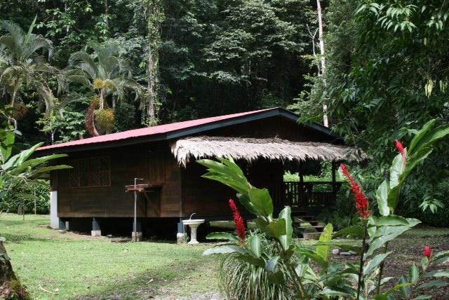 Casa Ginger - Image 1 - Puerto Viejo de Talamanca - rentals