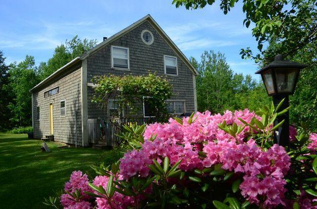 On the Farm blooms - Bramble Lane Farm & Cottage - Kingston - rentals