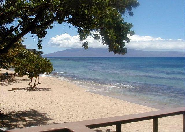 Hale Kai #203 - Your Home by the Sea in West Maui - Image 1 - Lahaina - rentals