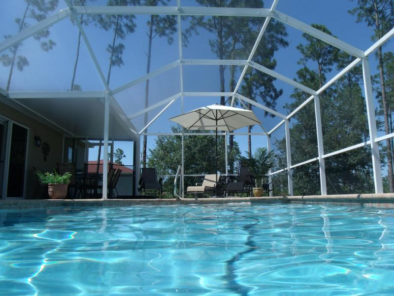 Pool Area - Villa Katrin Luxery Pool Home  close to Fort Myers - Lehigh Acres - rentals