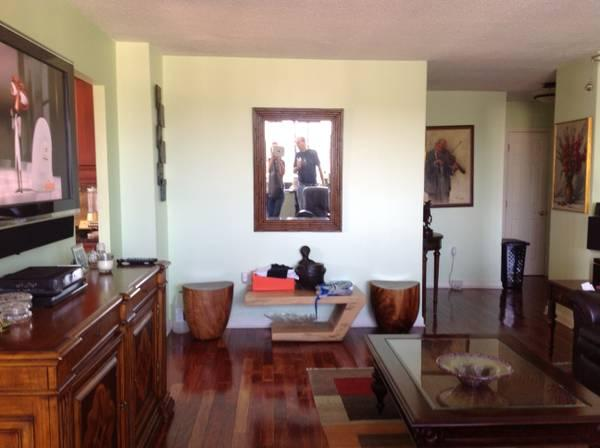 Living Room - Easy commute to NYC.    Views of Manhattan from every window - Hackensack - rentals