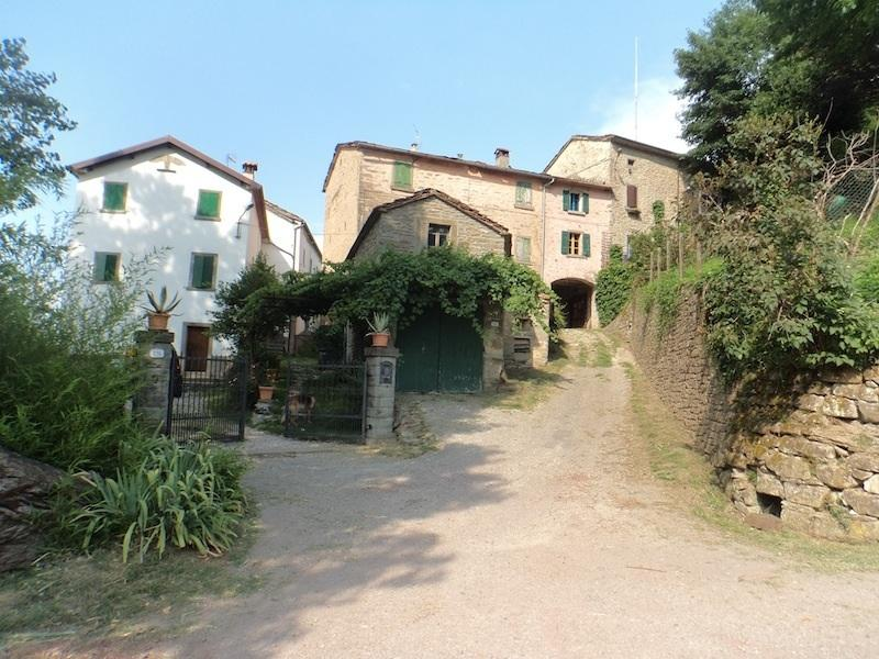 Mercurio, rustic comfort in the Tuscan countryside.  An artist's paradise.  Quiet, scenic. Italy. - Northern Tuscany Country Home - Firenzuola - rentals