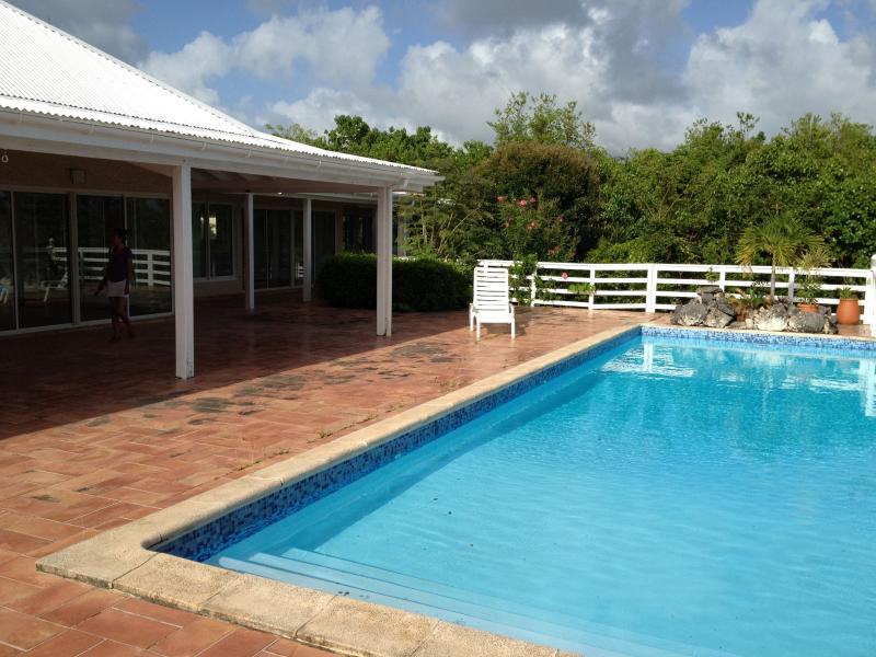 Luxury villa in the pearl of french Caribeans - Image 1 - Saint Martin - rentals