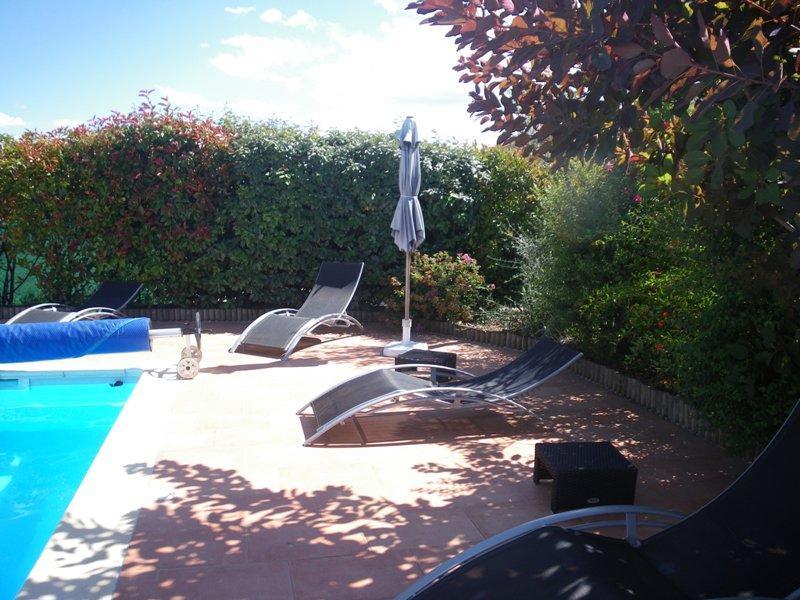 Espace piscine (5 x 11,5) - Gite Douillet Dans Le Gard, Entre Cevennes Et Camargue - St Jean de Crieulon - rentals