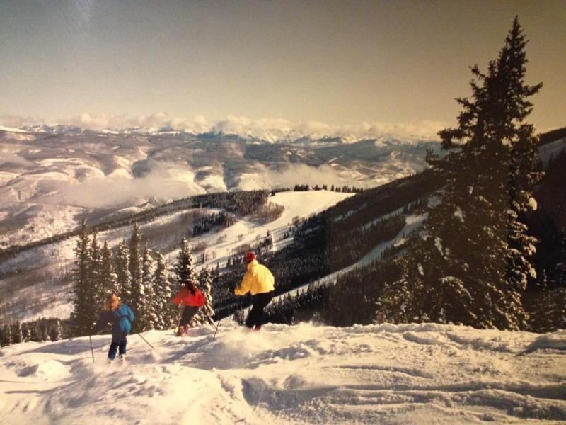 Free Ski Shuttle From Front Door of the Home - 8BR Home, Shuttle, Pool, HotTub, PoolTable, Pet OK - Beaver Creek - rentals
