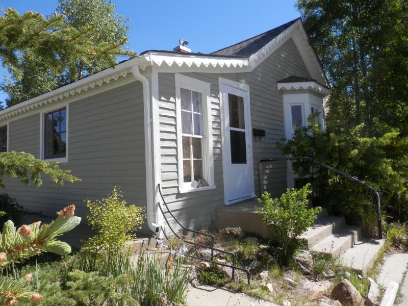 front of home - Charming home with views of Mount Massive - Leadville - rentals