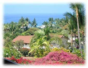 "New 60"" HDTV - BEAUTIFUL, LOVELY, LOCATION Last Mi - Image 1 - Kailua-Kona - rentals"