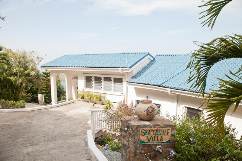 Sea Turtle Villa - St. John rental villa with pool - Image 1 - Saint John - rentals