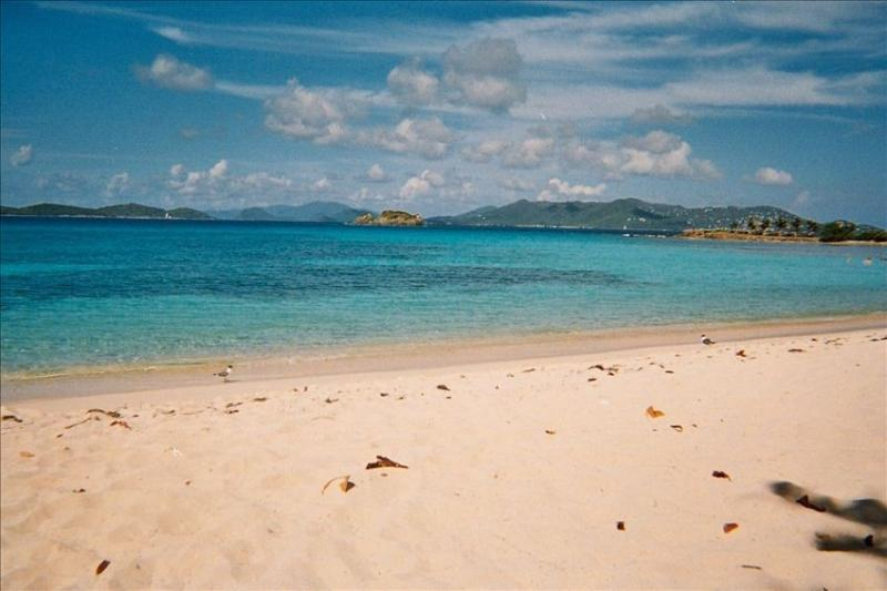 With St John in view, the NY Times calls Sapphire Beach the best on St Thomas - Beautiful Sapphire Beach - St Thomas' Best - East End - rentals
