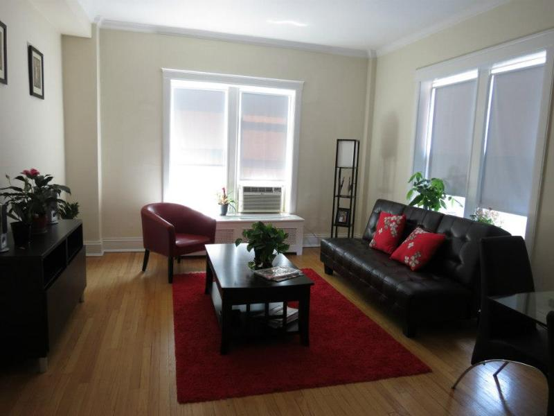 Nice 1 BR in Lincoln Park, Chicago - Image 1 - Chicago - rentals