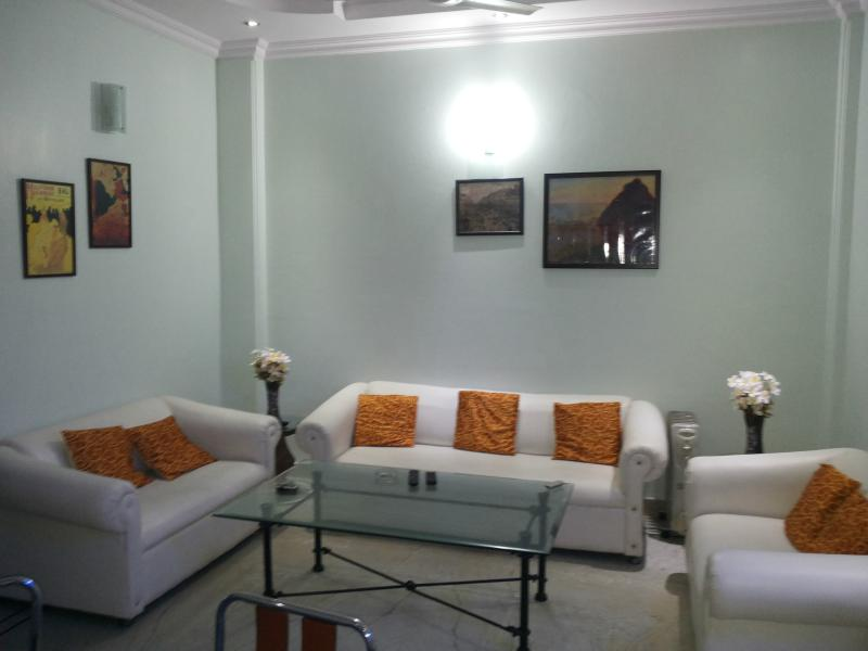 living room - Diplomat vacated fully furnished park facing apatment - New Delhi - rentals